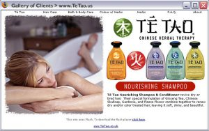 Te Tao Hair products - Complete web design, development, and some print work. 2003 - 2005